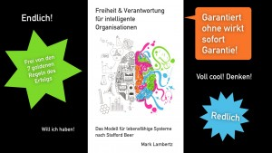 Viable-System-Model-Buch-Spass-Promo-Grafik